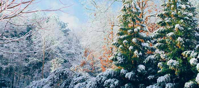 winter is a wonderful time to enjoy shopping, dining, and the wonderful sights in Langhorne, Bucks County PA